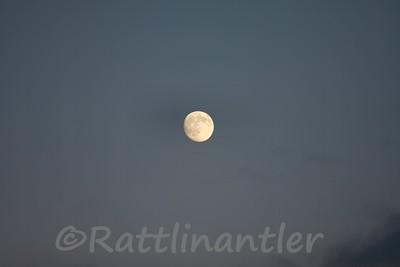 Moon103109_002