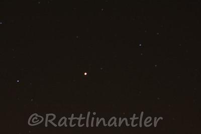 Stars031012_006
