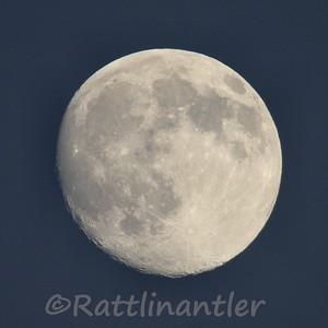 Moon103109_004