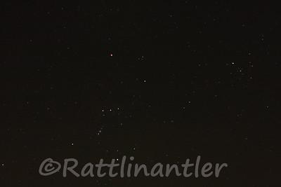 Stars031012_005
