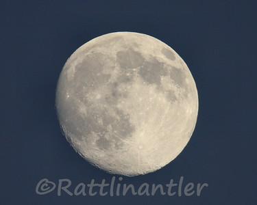 Moon103109_003