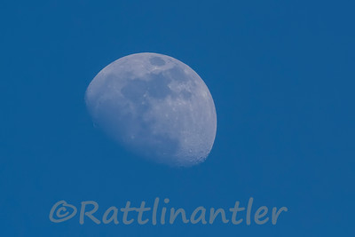 Moon050914_001