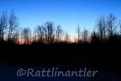 Sunrise over the Bog