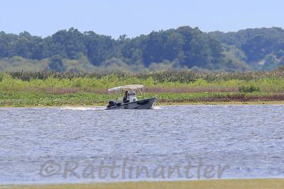 Florida Fish and Wildlife on Patrol