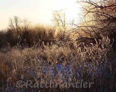 Sunrise010910_010