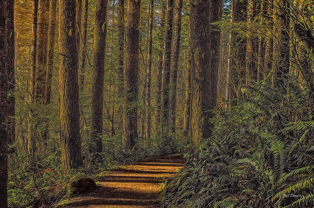 fantasy forest bposner images
