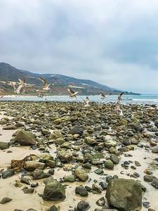 Leo Carrillo State Beach II, California