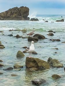 Leo Carrillo State Beach VII, California