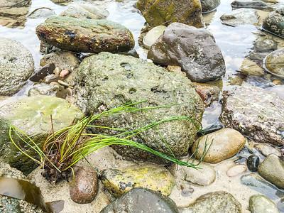Leo Carrillo State Beach V, California