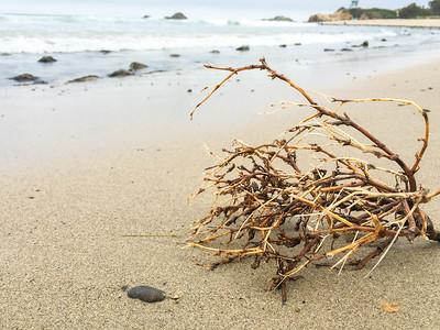 Leo Carrillo State Beach IV, California