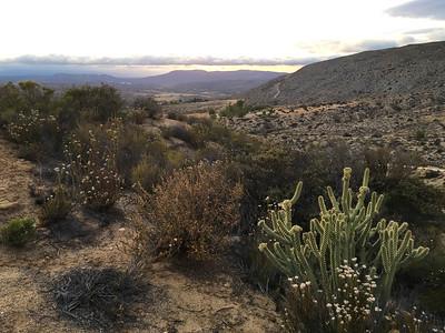 Wildomar III, California