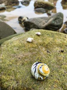 Leo Carrillo State Beach III, California