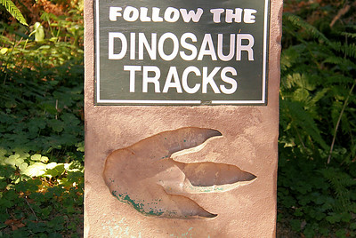 Clever signs to lead you through the rain forest setting.