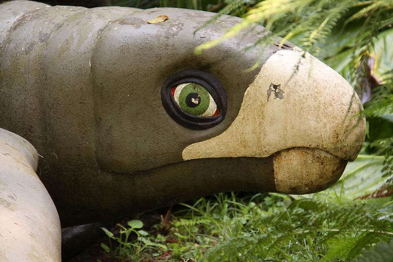 """Archelon, """"ruler turtle"""" closeup"""