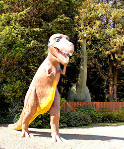 T. Rex at the entrance to The Prehistoric Gardens 10-12 mi south of Port Orford, OR.  23 life size dinosaurs, based on actual measurements of skeletons.  The colors are the whimsy of the artist.