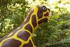 "Psittacosaurus, ""parrot lizard"""