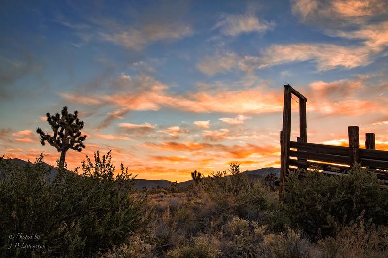 Sunrise at the Cima Corrals