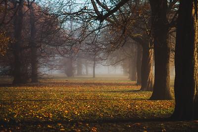 Mists of London