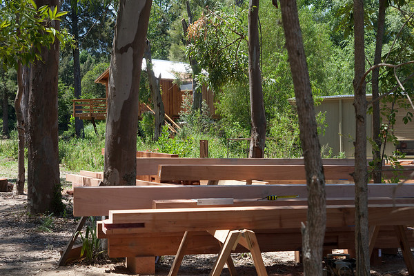 Nahuel's Ark