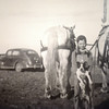 Eugene Littlefield and his dog standing behind the horses that plowed the wheat and sorghum fields on their Swisher County Farm. Photo courtesy of Littlefield Family Album.  Photo taken in 1939.