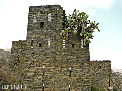 Fortress with Cactus