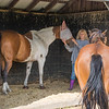 Moe (Paint mare) & Guardian, Deb (with Evie too!)