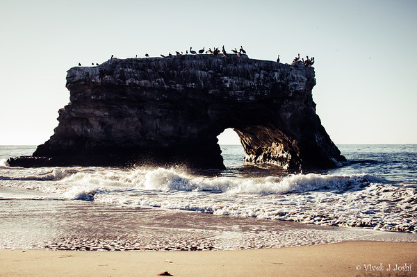 Natural Bridges State, CA