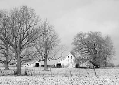 A white barn surrounded by large trees in the rural area of indiana