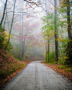 Foggy Mountain Road - Highlands, NC