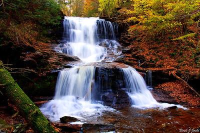 Rickett Glen State Park