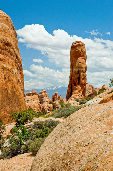 Hoodoos in Arches National Park, Utah