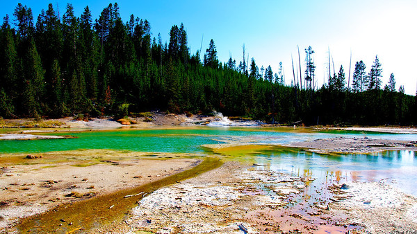 Crackling Lake,Norris Geyser Basin