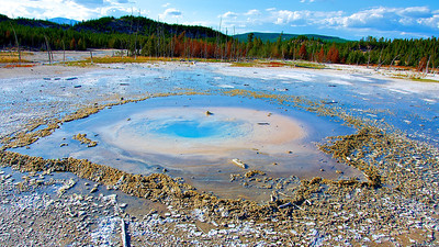 Pearl Geyser,Norris Geyser Basin