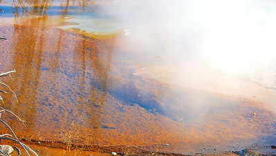Minute Geyser,Norris Geyser Basin