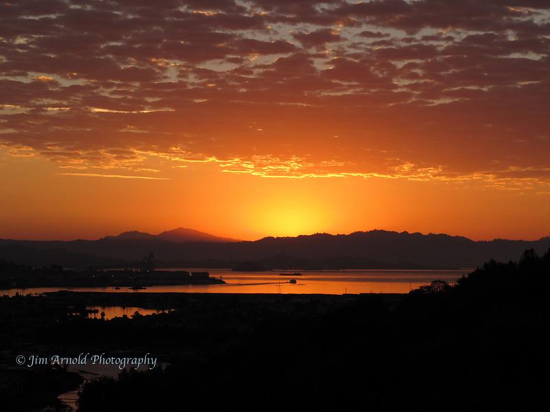 Larkspur Sunrise