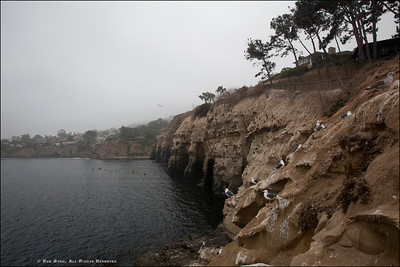 La Jolla Cove La Jolla, California.