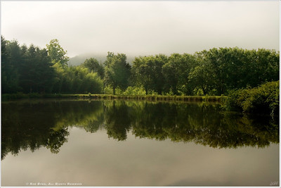 """""""Still Waters"""" An eerie, post-storm silence enveloped this small pond located just outside Brevard, NC. Then, for a brief moment, the sun broke through low clouds lighting up the bamboo forest just beyond the pond's edge."""