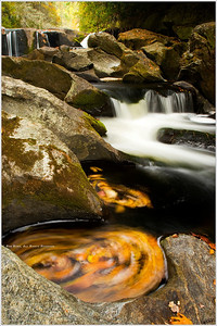 """Stir Constantly"" The Potholes along Bull Pen Gap Road offer up thousands of interesting photo opportunities any time of year, but in the Fall the pools come alive with color and motion."
