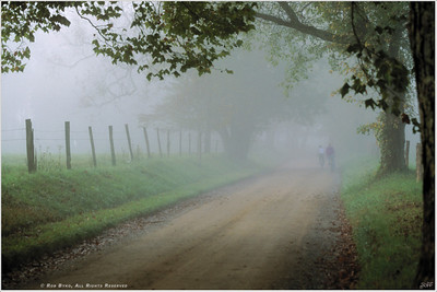 """Foggy Mountain Morning"" A couple descend into the dense fog on a early morning bicycle ride down Sparks Lane, in Cades Cove, part of the Great Smoky Mountains National Park."