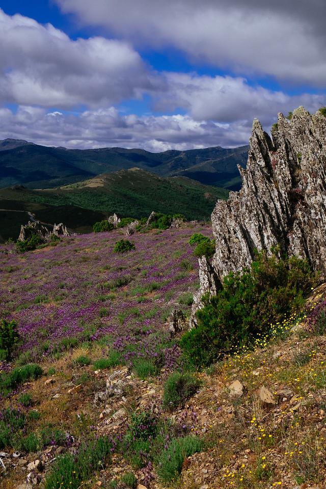 Travesía de Peñalba a La Pinilla