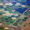 Farm pattern 1 from 30,000