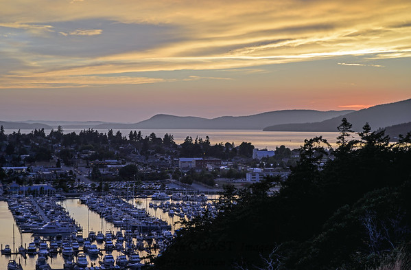 Anacortes Harbor 1