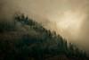 Mountain Mist Glow