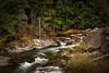 Pass Creek in Autumn