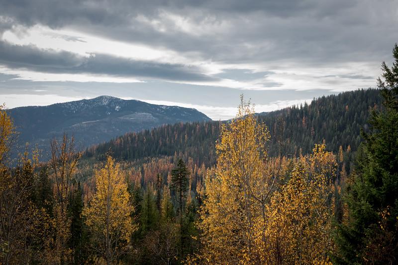 Bombi Pass in Autumn
