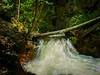 Creekside Solitude