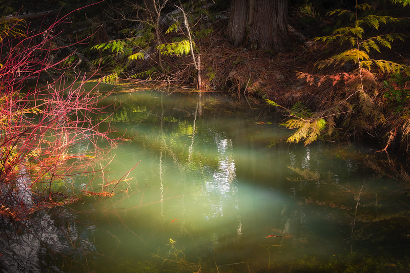 Magical Pool