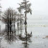 Lake Martin, Louisiana 021817 023