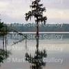 Lake Martin, Louisiana 032317 041
