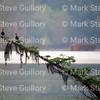 Lake Martin, Louisiana 032317 043